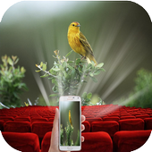 Real Video Projector HD Prank icon