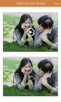 Video to GIF Artist screenshot 5