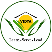 Vidya Knowledge Park icon
