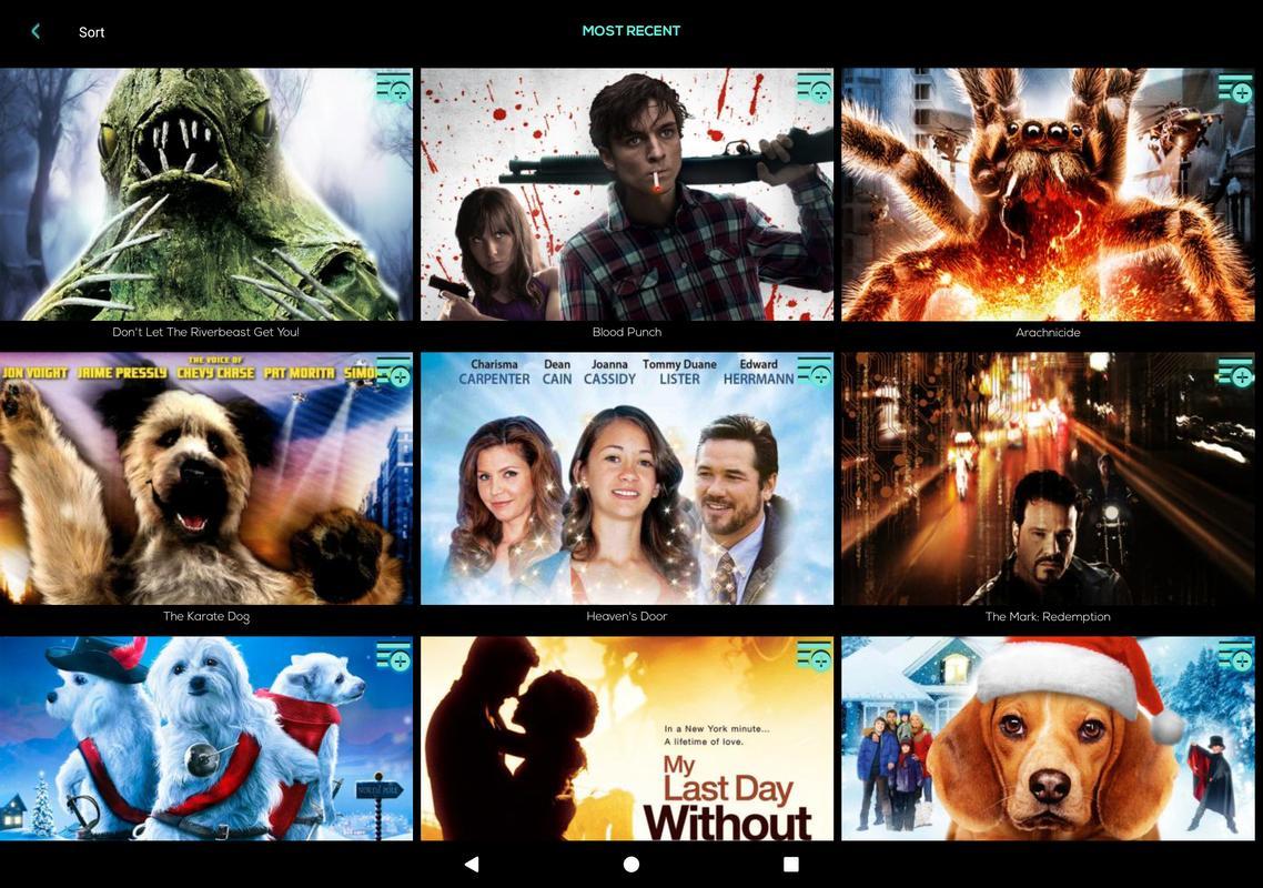 blood punch movie download