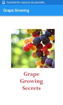 Grape Growing poster