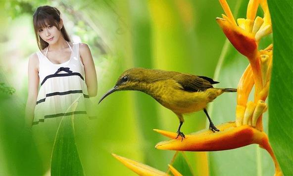 Birds Photo Frame screenshot 2