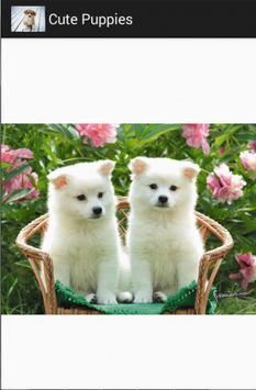 cute puppies screenshot 3