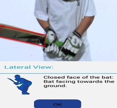 Backlift Cricket Analyser apk screenshot