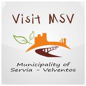 Visit MSV icon