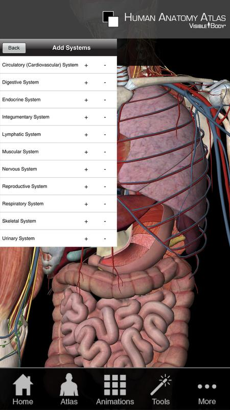 Human Anatomy Atlas Sp Apk Download Free Medical App For Android