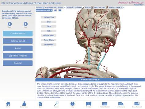 Anatomy Physiology Springer Apk Download Free Medical App For