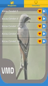 Kicau Cendet Master screenshot 6