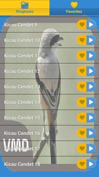 Kicau Cendet Master screenshot 1