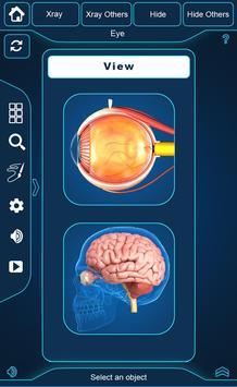 My Eye Anatomy poster