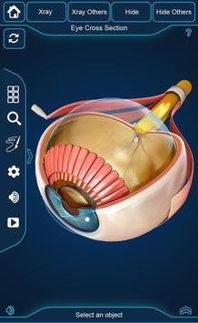My Eye Anatomy screenshot 1