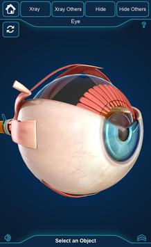 My Eye Anatomy screenshot 3
