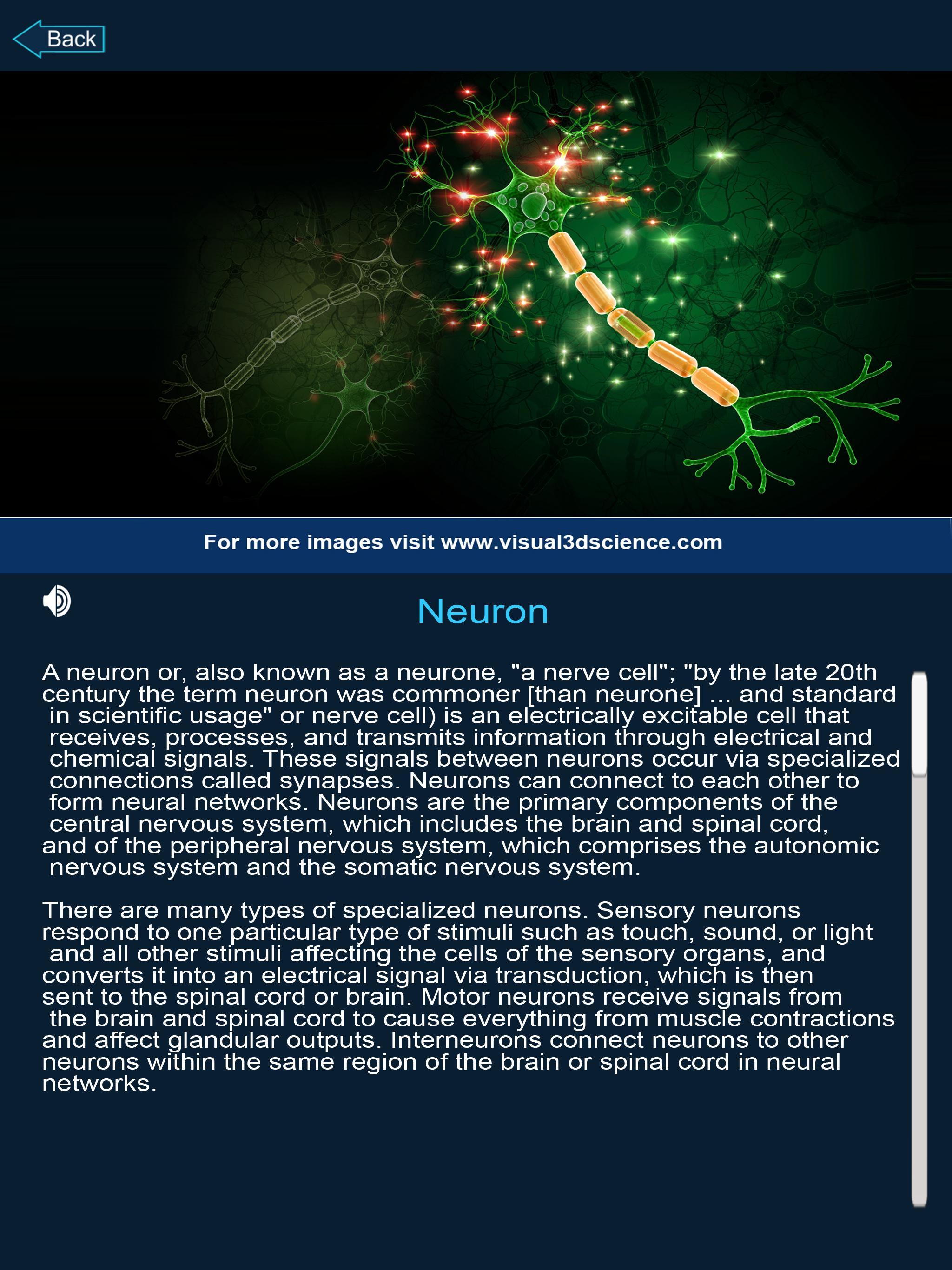 Brain Anatomy Pro  for Android - APK Download