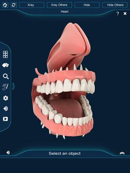 Dental Anatomy Pro. screenshot 10