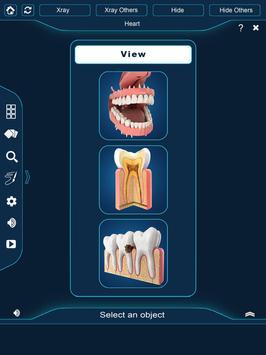 Dental Anatomy Pro. screenshot 9