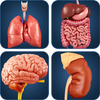 My Organs Anatomy simgesi