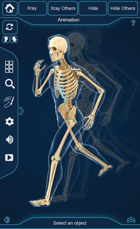 My Skeleton Anatomy APK-Download - Kostenlos Medizin APP für Android ...