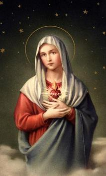 Virgin Mary Live Wallpaper Poster