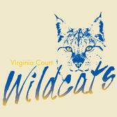 Virginia CE icon