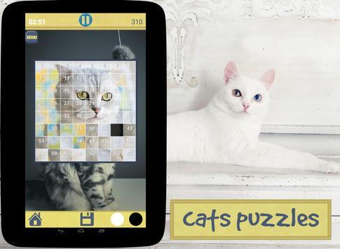 Cats Puzzles screenshot 4