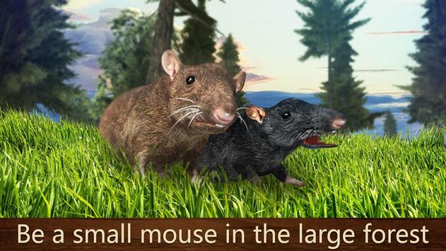 how to raise a mouse