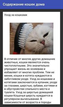 Содержание кошек дома screenshot 1