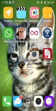 Cute Cat Live Wallpaper screenshot 3