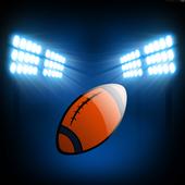 Denver Football Wallpaper icon