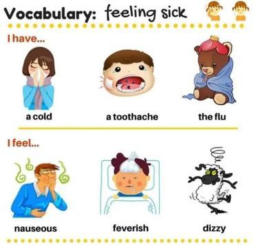 Vocabulary simple screenshot 1