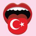 Turkish Voice Translator
