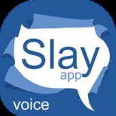 Slay App icon