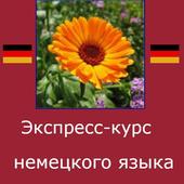 Немецкий язык. Экспресс-курс icon