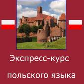 Польский язык. Экспресс-курс icon