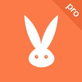 Turbo VPN Pro icon