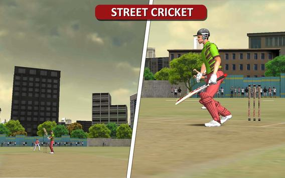 MS Dhoni: The Official Cricket Game screenshot 18