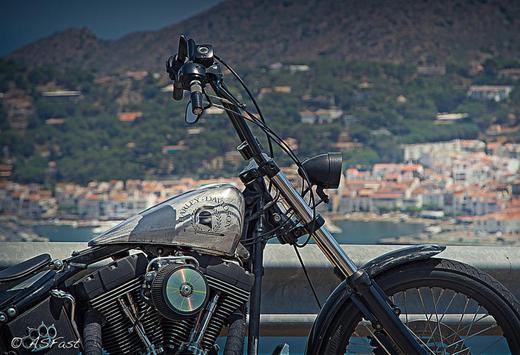 Motorcycle Harley Davidson poster