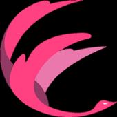 Ezfy icon
