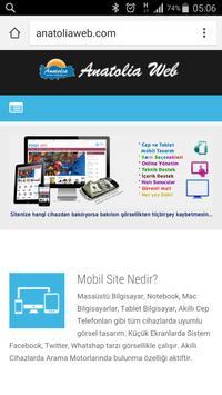 Anatolia Internet Web Tasarım poster