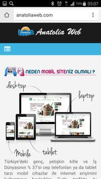 Anatolia Internet Web Tasarım screenshot 2