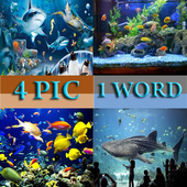 4 PIC ONE WORD icon