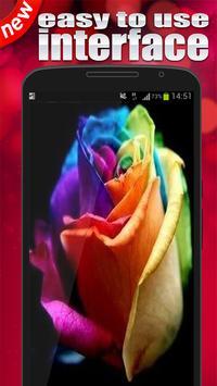Rainbow rose Wallpaper apk screenshot