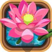 Bloom Everywhere icon