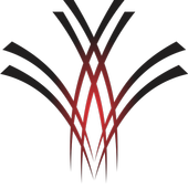 AMBER icon