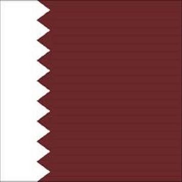 To know about Qatar apk screenshot