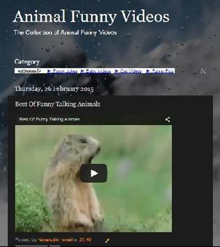 Animal Funny Video Collection apk screenshot