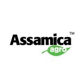 Assamica Agro icon