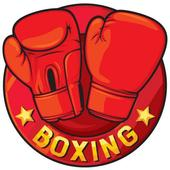 Boxing facts icon