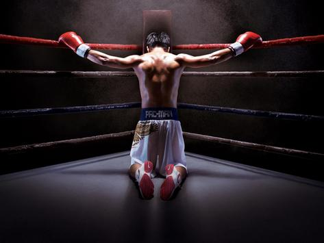 Boxing facts poster