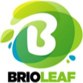 Brioleaf icon