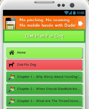 Diet Plan For Dog poster